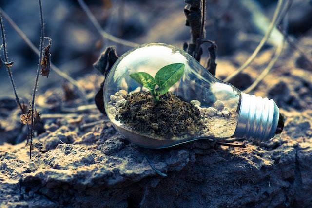Climate change bulb