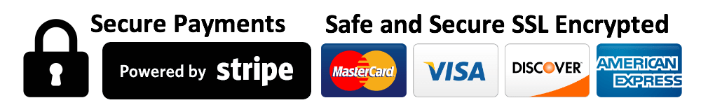 secure stripe payment icon