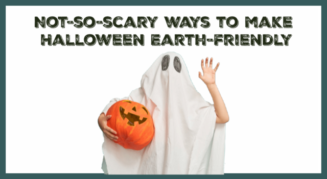 Not-so-scary ways to make your Halloween Earth-friendly